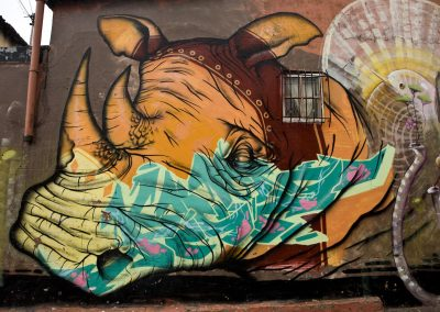 Grafitti of Rhino in Cape Town