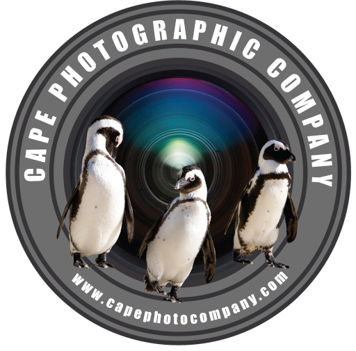 Cape Photographic Company